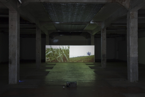 Walk, 2011 – with Tereza Velíková. Video (3.50') recorded simutaneously with two cameras, , exhibition view from Karlin Studios.